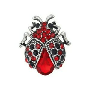 Red And Black Ladybug Brooch